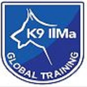 IlMa Global Training